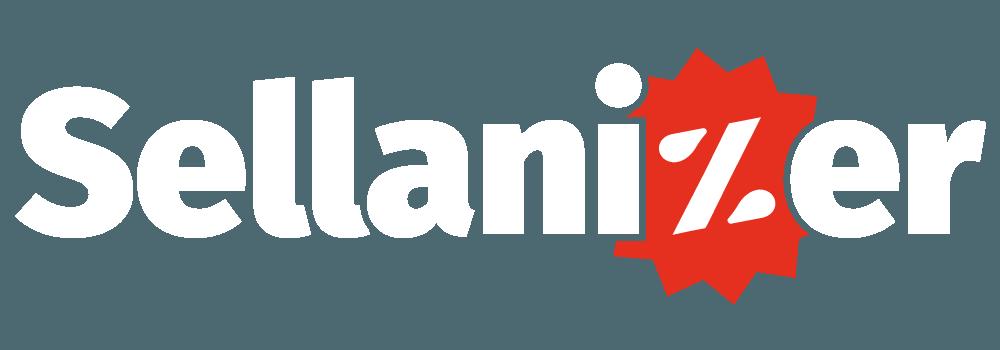 Sellanizer Online ohne Onlineshop